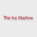 The Ivy Marlow Breakfast